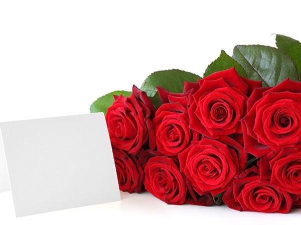 Composizioni floreali carpi rubiera addobbi floreali for Addobbi per laurea