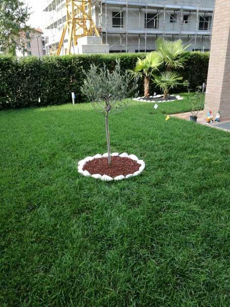 Giardiniere-economico-per-cura-verde-Carpi