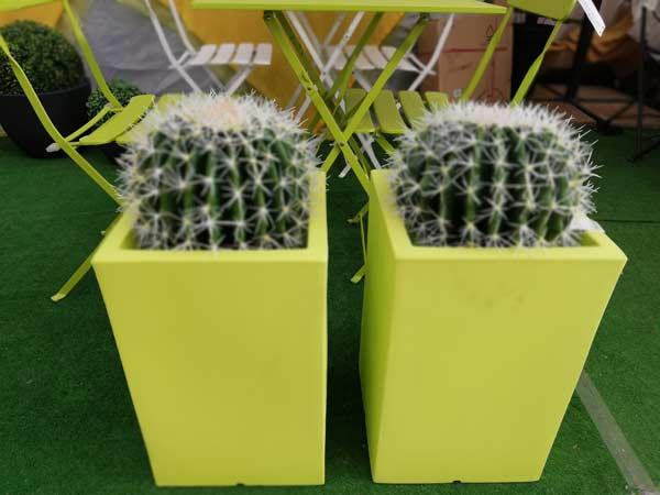 Vasi d arredo reggio emilia modena piante fiori bonsai esterno interno moderni for Vasi per arredo casa